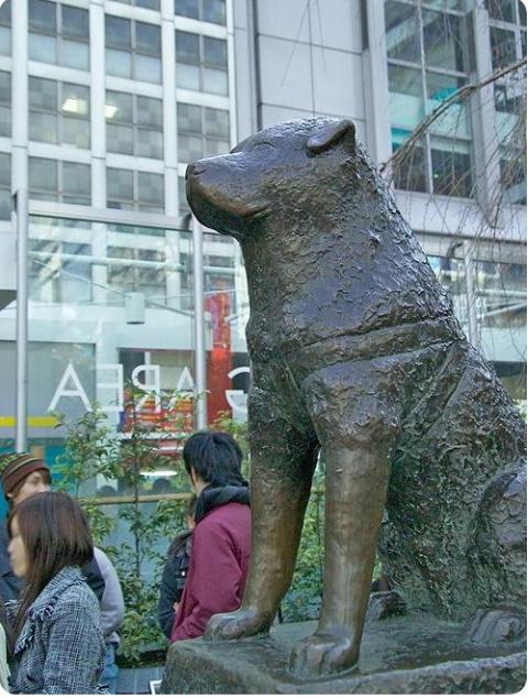 Памятник собаке на вокзале
